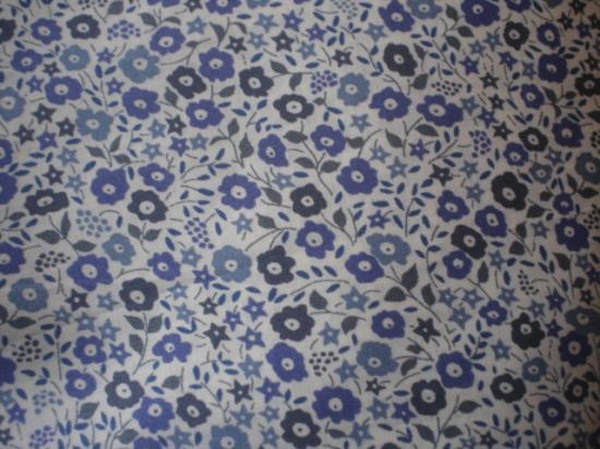 Fairford bleu (et violet)