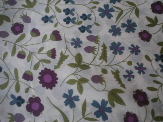 Mirabelle bleu et prune